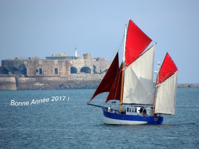 bonne-annee-2017-dscn9415